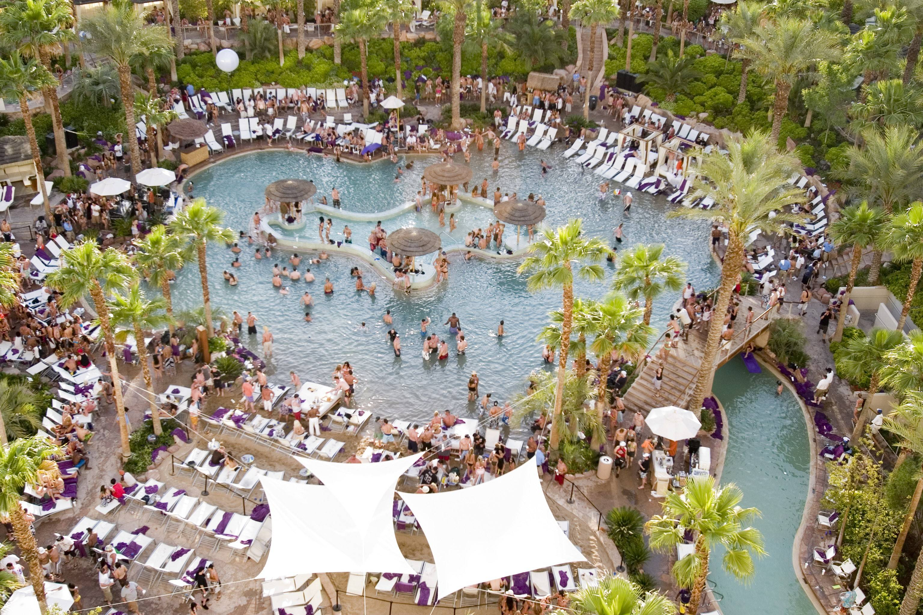 Rehab Pool at Hard Rock Hotel